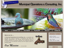 Web Design Project - Municipalops